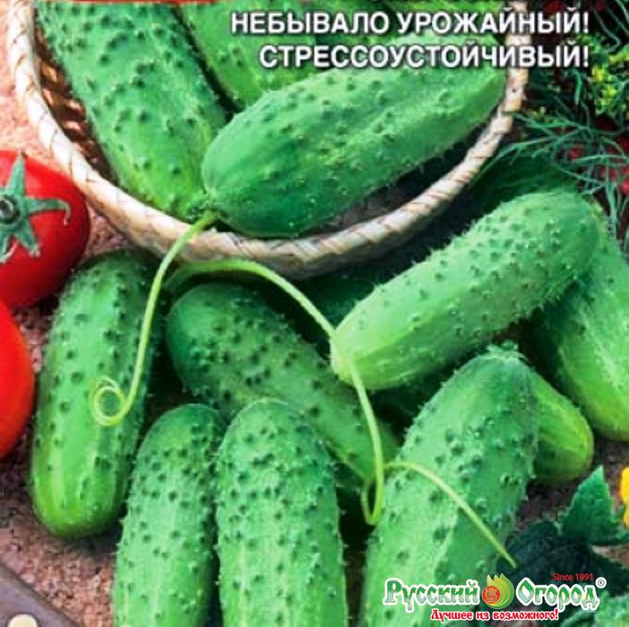 семена конопляные почтой россии