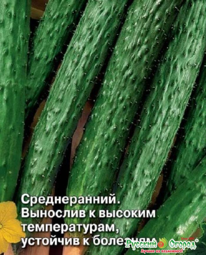 двери валенсия жароустойчивые сорта огурцов с фото будет