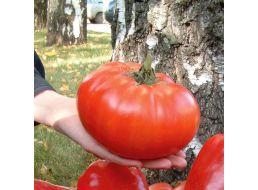 Русской по самые помидоры мамки